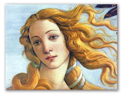 """Dettaglio di """"Venere"""" di Botticelli"""