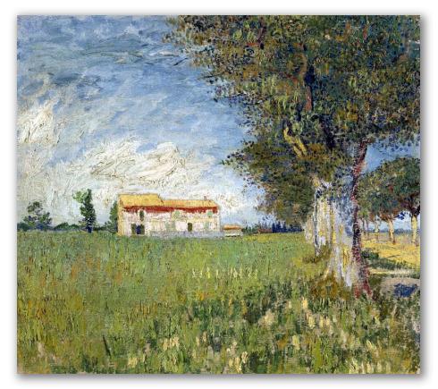 Casa nel Campo di Grano