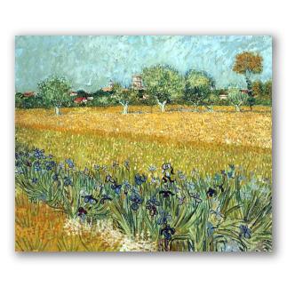 Veduta di Arles con Iris in Primo Piano